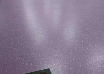 Maryland Nursery Polyflor 'Astral' Safety Floor